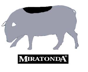 lomo ibérico Miratonda